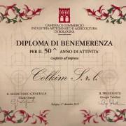 Diploma 50 anni