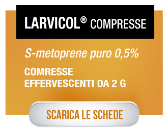 Larvicol_compresse