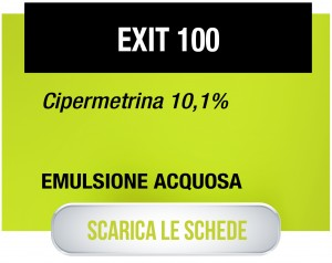 Exit100-01