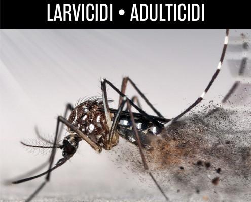 Larvicidi_blog