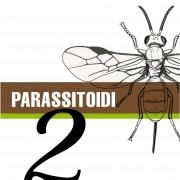 Parassitoidi_blog